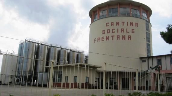 La Cantina Frentana di Rocca nella rete italiana dell'eccellenza vitivinicola