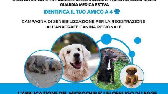 Domani a San Vito la Asl organizza il Microchip day