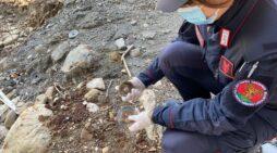 Lavori fondovalle Sangro: i carabinieri forestali trovano terra mista a rifiuti nell'alveo del fiume